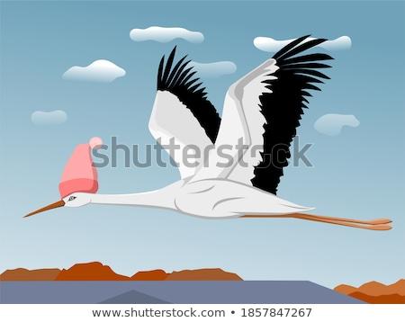 stork over blue sky Stock photo © taviphoto