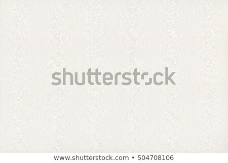 Eggshell On White Stock photo © cosma