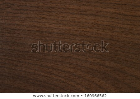 Tyrol beech Wooden texture Stock photo © 3pphoto31