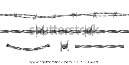 Dikenli tel yalıtılmış vermek beyaz savaş siyah Stok fotoğraf © cherezoff