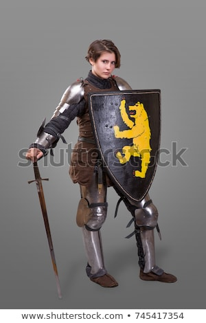 medieval knight isolated on grey background stock photo © nejron