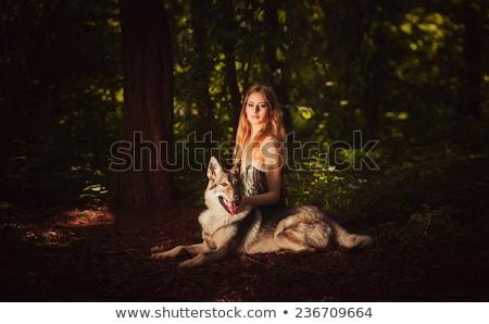 Nő pózol farkasok kint gyönyörű nő lány Stock fotó © tobkatrina