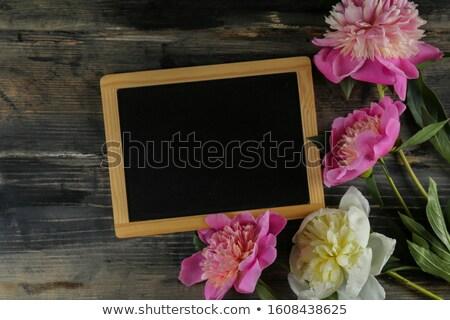 じょうろ · ヒナギク · 夏 · 空 · 花 · 緑 - ストックフォト © zerbor