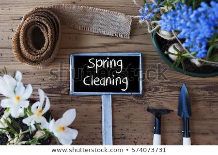 Nettoyage de printemps jardin main gant brosse peint Photo stock © EFischen