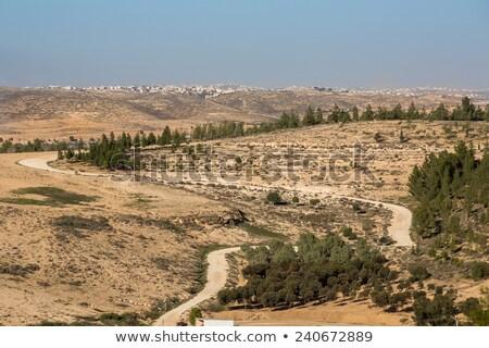 Comunidade aldeia deserto beleza montanha verde Foto stock © Zhukow