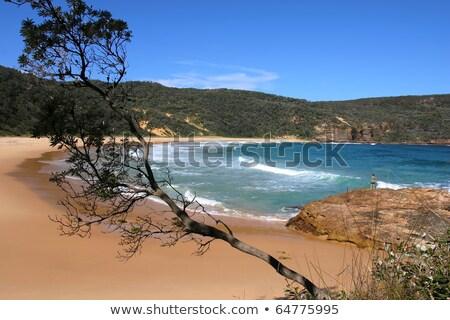 Foto d'archivio: Panorama · bella · tramonto · meridionale · costa · Australia