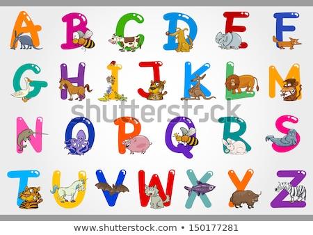 Funny cartoon animals vector alphabet letter set for kids  B is bear Stock photo © Dashikka