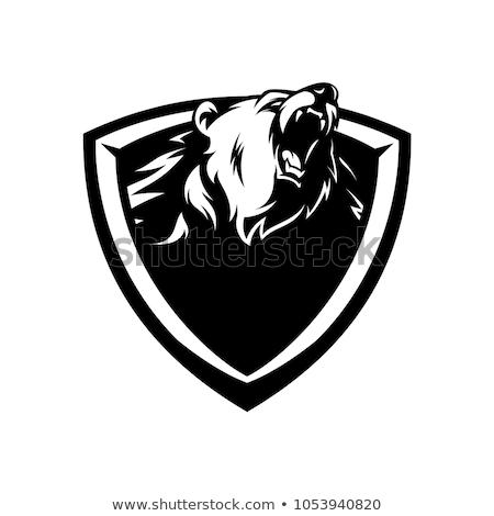 Jacaré cabeça escudo preto e branco ilustração crocodilo Foto stock © patrimonio