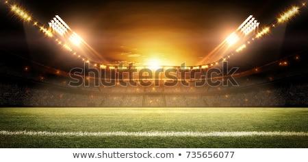 vacío · estadio · hierba · deportes · béisbol · concierto - foto stock © hamik
