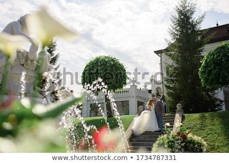 невеста жених позируют фонтан старые женщину Сток-фото © tekso