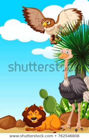 Zdjęcia stock: Trzy · zwierząt · pustyni · dziedzinie · ilustracja · charakter