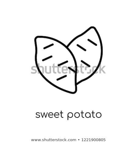 Patata dolce vettore line icona isolato bianco Foto d'archivio © RAStudio