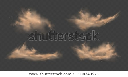 Storm in desert Stock photo © Givaga