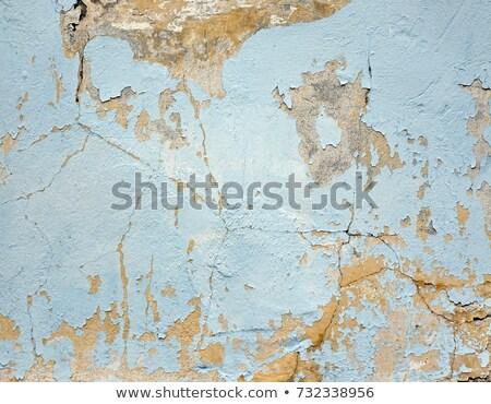 Veelkleurig vintage geschilderd muur textuur gebarsten Stockfoto © THP