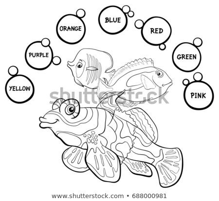 фундаментальный цветами образовательный набор морских животных Cartoon Сток-фото © izakowski