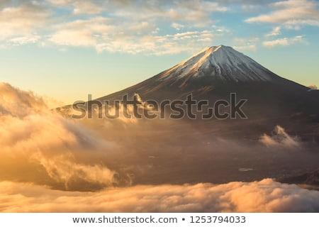 Monte · Fuji · montagna · lago · fioritura · rami · rosa - foto d'archivio © liolle