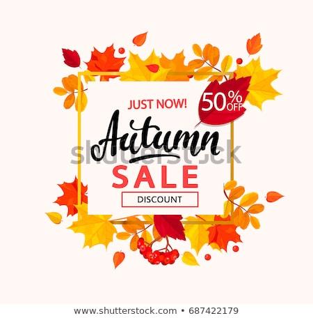 Super vente saison d'automne bannière réduction Photo stock © robuart