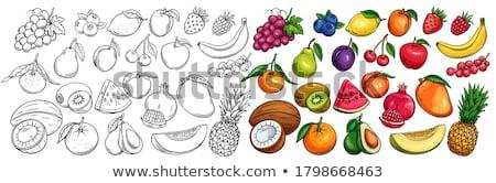 торговых продукции ананаса плодов набор вектора Сток-фото © robuart