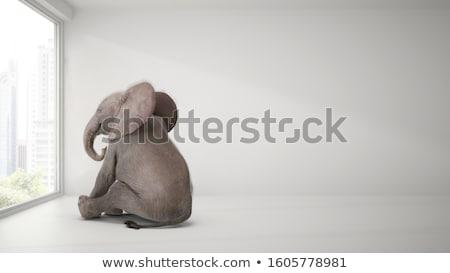 Foto stock: Elefante · ilustração · feliz · natureza · papel · de · parede · sozinho
