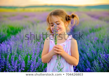 A Girl with funny braids collects bouquet in lavender field, holding and smell the lavender flowers Stock photo © ElenaBatkova