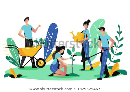 Volunteers Plant Tree in City Park. Vector People Stock photo © robuart