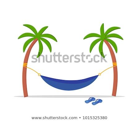 Vrouw zomer hangmat palmbomen oceaan zwempak Stockfoto © ElenaBatkova