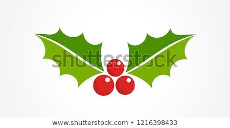 Рождества украшение изолированный Ягоды белый лист Сток-фото © fyletto