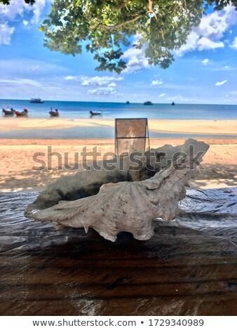 Areia cinzeiro porta praia textura natureza Foto stock © nuiiko
