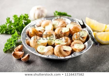 Jantar jantar caracol refeição alho Foto stock © M-studio