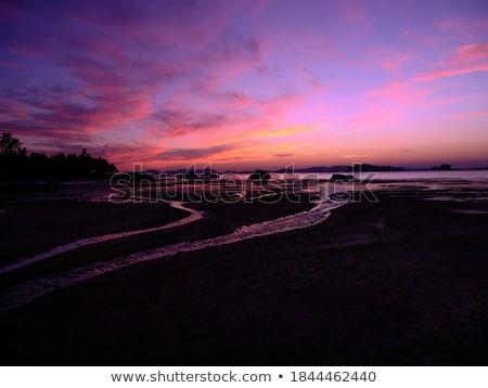 Сицилия · сумерки · север · побережье · воды · дома - Сток-фото © zittto