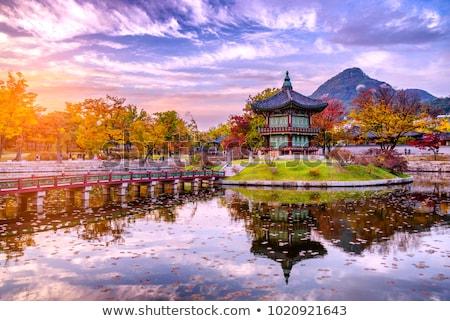 Geleneksel mimari Seul Güney Kore saray detay Stok fotoğraf © travelphotography