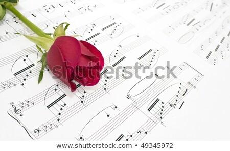 Piros rózsa pontszám művészet koncert piros jegyzet Stock fotó © M-studio