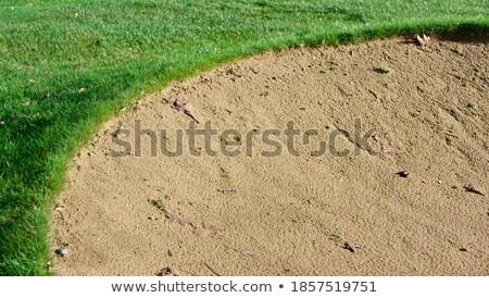 Golf coarse sand bunker Stock photo © byjenjen