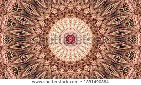 Caleidoscópio colorido imagem floral mandala abstrato Foto stock © stevanovicigor