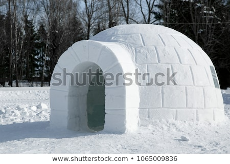 Igloo Stock photo © zzve