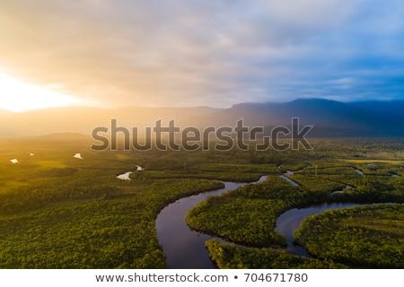 Sunset on the Amazon River Stock photo © wildnerdpix