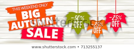 autumn offer in label with leaf Stock photo © marinini