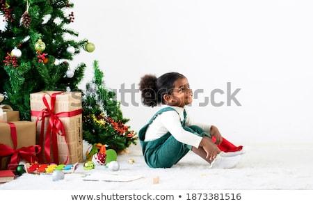 Grand Noël décorations boîte neige Photo stock © tannjuska