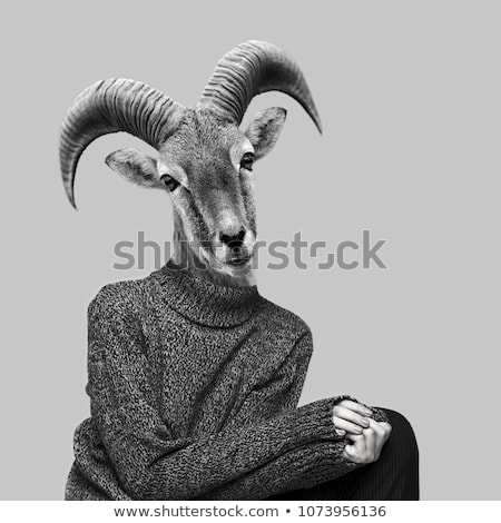 Portrait of woman with goat body-art isolated on white Stock photo © amok