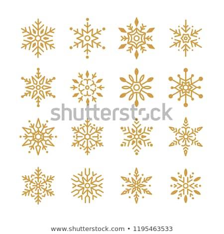 Golden Snowflakes Stock photo © hlehnerer