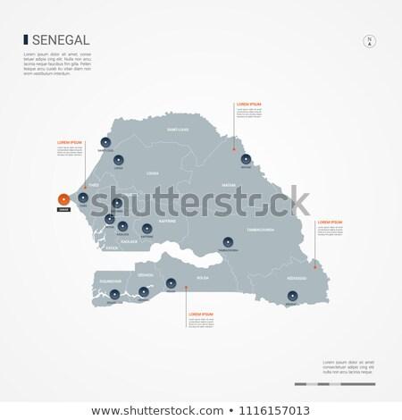 orange button with the image maps of senegal stock photo © mayboro