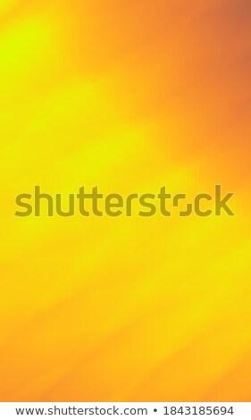 fractal illustration background with gold shiny satin flower Stock photo © yurkina