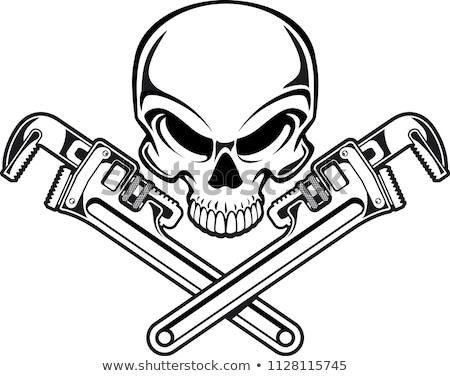 Pipe Wrench  Stock photo © shutswis