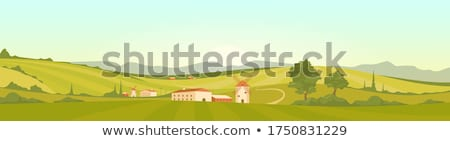 Fields in Tuscany Stock photo © Dar1930