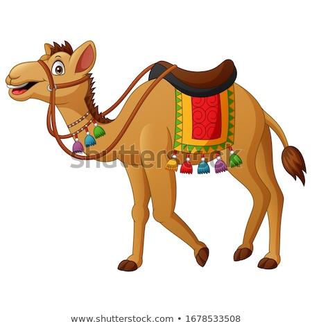 Sevimli kahverengi deve örnek gülen bir Stok fotoğraf © Morphart