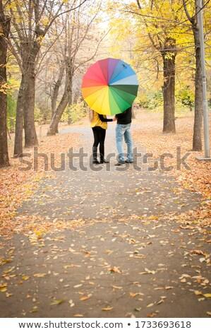 Dziewczynka parasol parku matka zielone Zdjęcia stock © Paha_L
