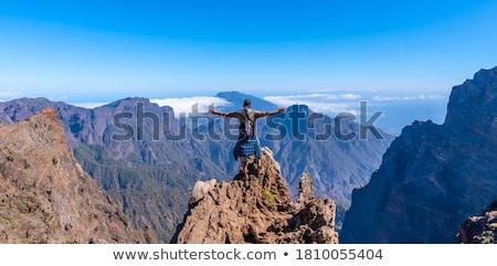 park · vulkáni · kövek · kék · ég · Kanári-szigetek · égbolt - stock fotó © tracer