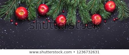Natal maçãs dois vermelho estrela decoração Foto stock © funix