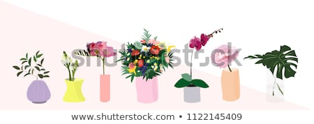 Vector Orchid in a Vase stock photo © aleishaknight
