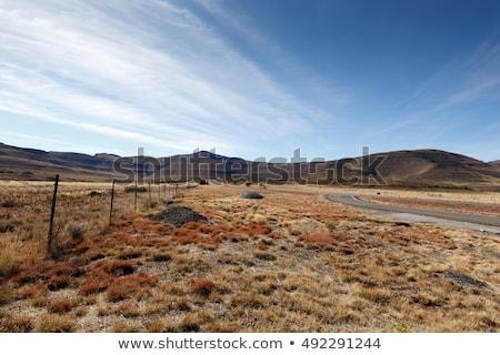 Zöld fű mező hegyek tele kilátás erdő Stock fotó © markdescande